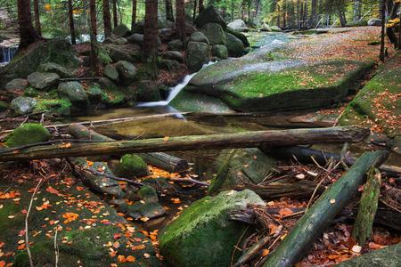 Poland, Sudetes, Karkonosze Mountains, stream with boulders, rocks, fallen autumn leaves and tree trunks Stock Photo