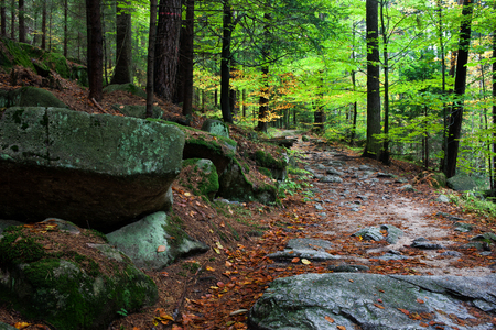 Rocky slope and trail in mountain forest in October, Sudetes Mountains, Poland, Europe