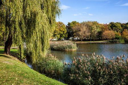 Early autumn foliage by the lake in Szczesliwicki Park in Warsaw city, Poland