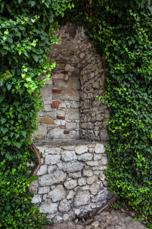Secret empty niche surrounded by creeping plants in stone wall of a medieval castle.