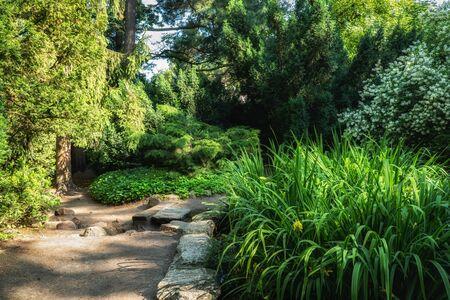 Tranquil scenery in garden of Lazienki Park in Warsaw, Poland.