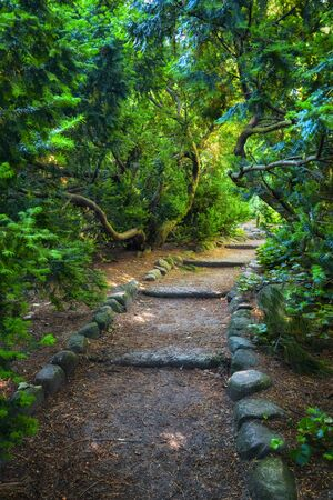 Footpath with stone steps through green foliage of bending trees in Lazienki Park in Warsaw, Poland.