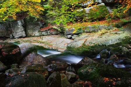 Creek in autumn mountain forest, tranquil scenery in the Karkonosze Mountains, Lower Silesia region, Poland.