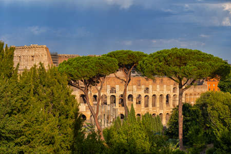 Behind the trees view of the Colosseum at sunset in city of Rome in Italy, ancient Flavian amphitheatre.