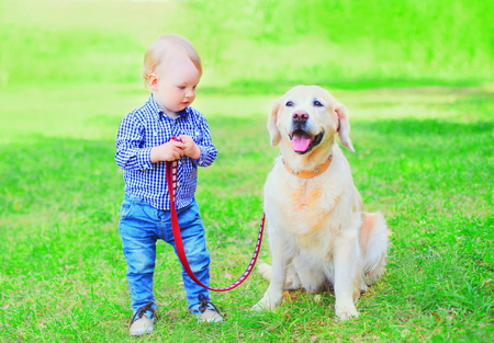 child is playing with Golden Retriever dog on the grass on a summer