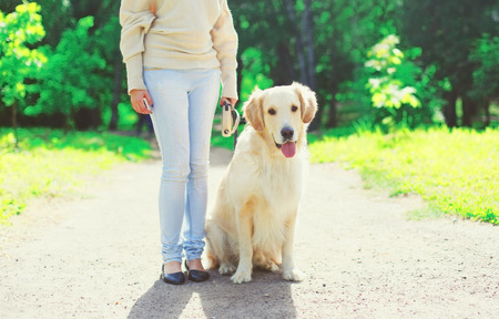 Woman owner walking with her Golden Retriever dog on leash in summer day