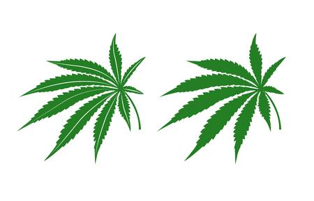 plant pot: Marijuana leafs