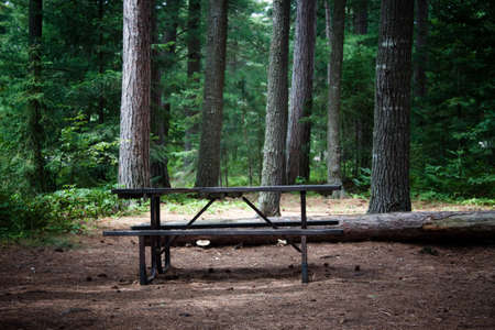 picnic table: Image of a picnic table in the wilderness at a campsite