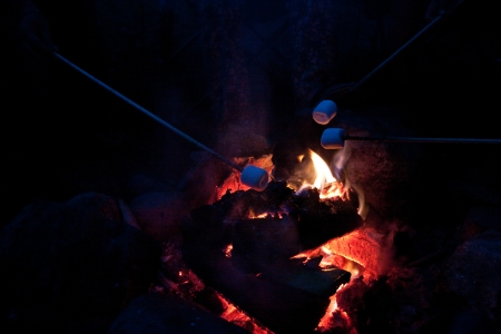 Roasting marshmallows over a camp fire. High ISO shot. Contains grain. photo