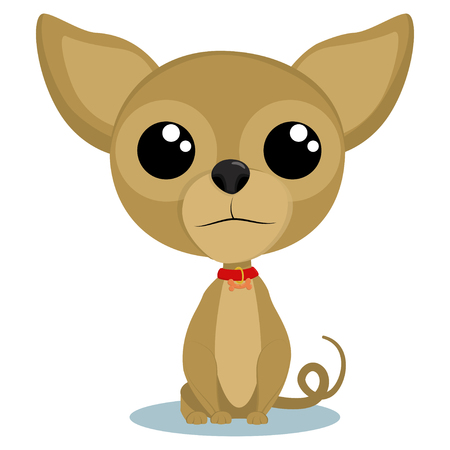 Dog Chihuahua sitting. Cartoon vector illustration isolated on white background.