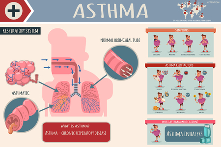 Asthma symptoms, risk factors and medications. Medical cartoon infographics of the human respiratory system with healthy and sick lungs. Vector illustration of the character of a man with a disease. Illustration