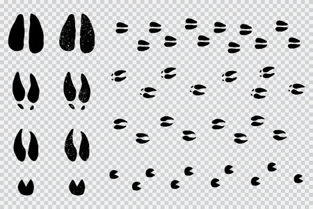 Herten en elanden volgen zwart silhouet. Vector dieren voetafdruk set geïsoleerd op een transparante achtergrond. Vector Illustratie