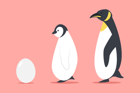 Penguin and egg vector cartoon flat animal illustration isolated on background. Vecteurs