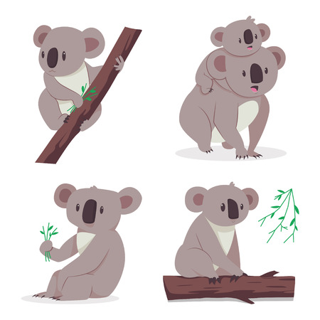 Cute koala bear with a baby on a eucalyptus tree. Vector cartoon flat set of animal characters isolated on white background. Illustration