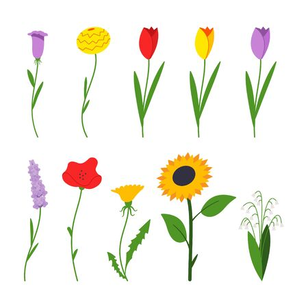 Spring flowers vector cartoon flat simple set isolated on a white background.