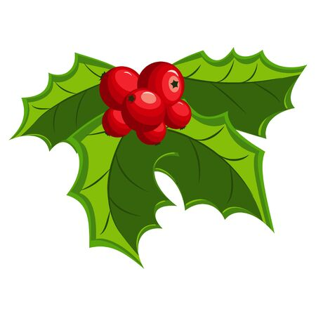 Christmas holly berry leaves. Vector mistletoe icon isolated on a white background. Illustration