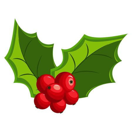 Christmas holly berry leaves icons. Vector cartoon mistletoe icon isolated on a white background.