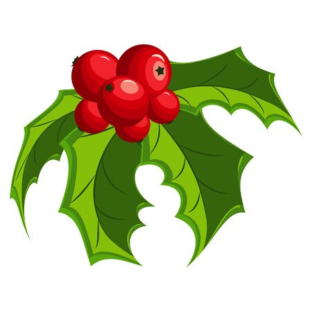 Christmas holly berry leaves. Vector cartoon red mistletoe icon isolated on a white background.