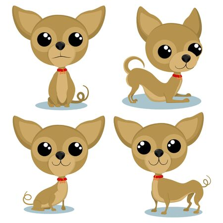 Chihuahua cartoon character in various poses. Cute little dogs vector set isolated on white background.  イラスト・ベクター素材