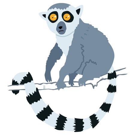 Lemur monkey. Cartoon vector illustration of isolated on white background.