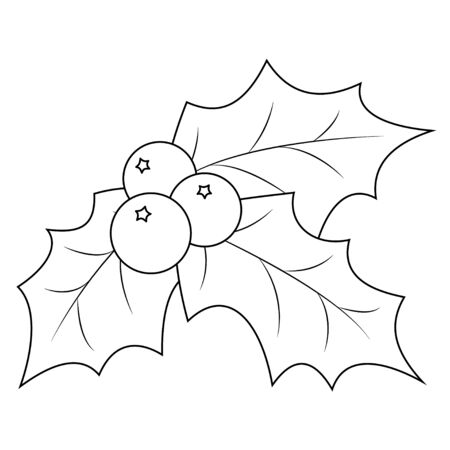 Coloring book page Christmas holly berry leaves. Vector illustration on a white background.
