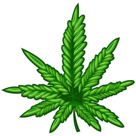 Marijuana or cannabis leaf vector icon isolated on white background.