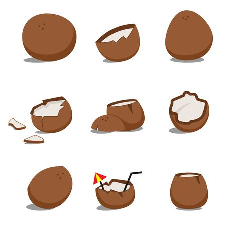 Coconut vector cartoon set isolated on a white background.
