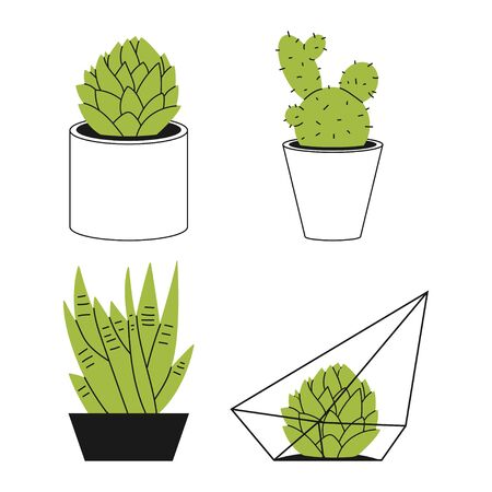 Succulents and cactus in a pot vector hand drawn illustration isolated on a white background.