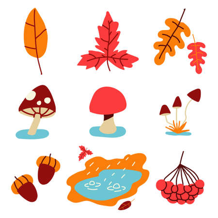 Autumn leaves, grass, mushrooms and puddle. Fall elements vector simple set isolated on white background. Ilustrace