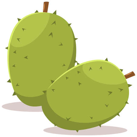 Two durian tropical exotic fruit. Cartoon vector flat icon isolated on white background.