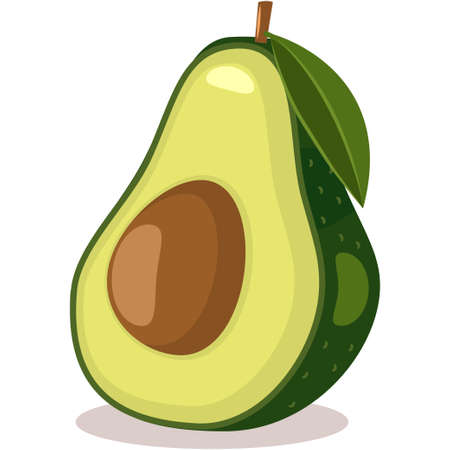 Avocado with leaf tropical exotic fruit. Cartoon vector flat icon isolated on white background.