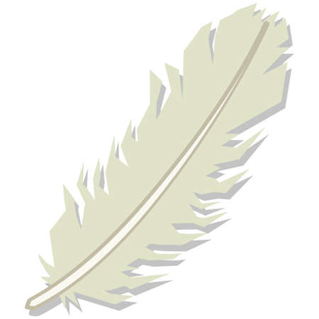 Feather isolated on white background. Vector cartoon illustration. 向量圖像