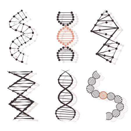 DNA vector flat icons set isolated on white background.