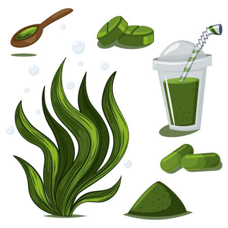Spirulina plant, powder, pills, capsules and smoothies. Vector cartoon set of seaweed and medicine drug isolated on white background.