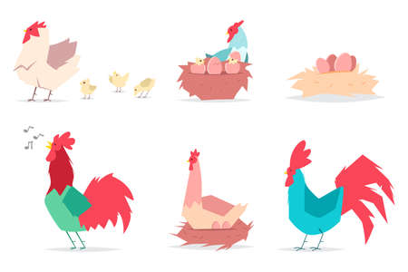Hen with eggs, chicks and roosters. Vector flat set of chicken and cocks isolated on white background. Illustration