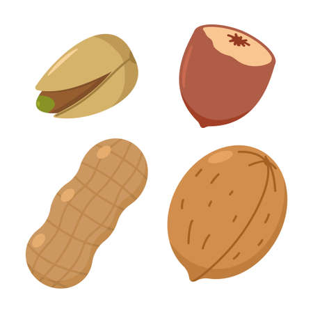 Nut vector cartoon set isolated on a white background. Illustration