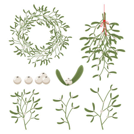 Christmas mistletoe with berry, leaves, sprig, wreath and branches. Vector cartoon holiday decoration element set isolated on a white background.