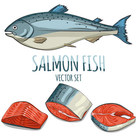 Salmon fish, steak, fillet and slice vector set. Cartoon hand draw illustration isolated on white background. Seafood icons.