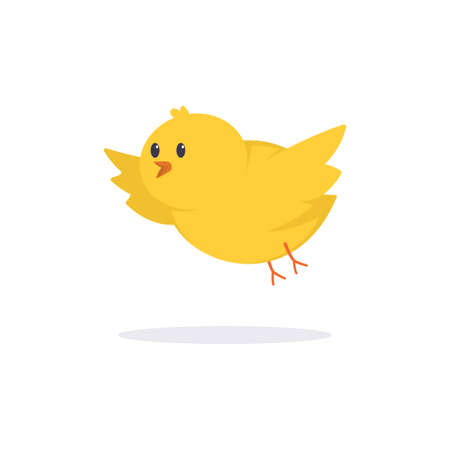 Cute yellow chick vector flat illustration of a flying bird isolated on white background.