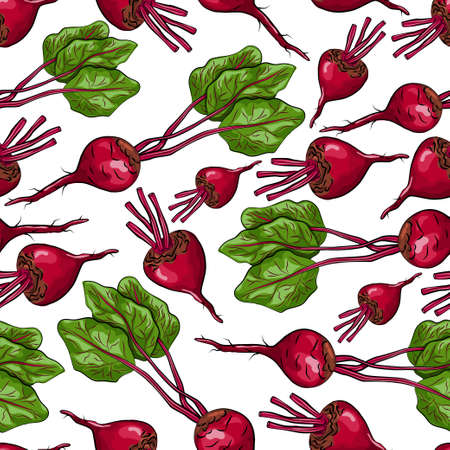 Beetroot vector seamless pattern on a white background for packing, wrapping, labels and backdrop. Vegetables texture.