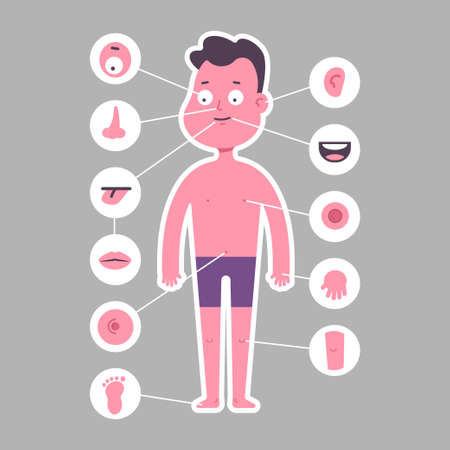 Part of body: nose, leg, eye, ear, arm, mouth, foot, tongue, navel, lips, knee. Boy in underwear vector cartoon character isolated on background. Stock Illustratie