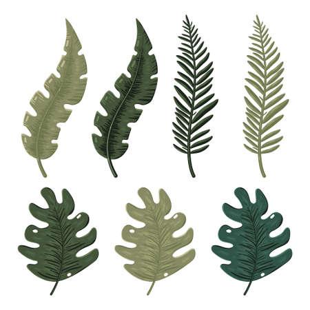 Jungle leaves cartoon set isolated