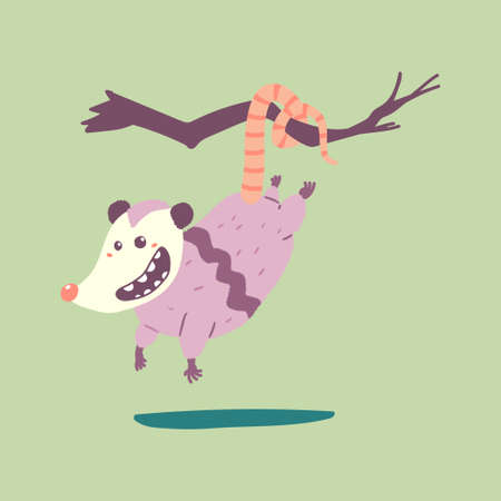 Cute possum hanging on a branch tree vector cartoon character isolated on background.