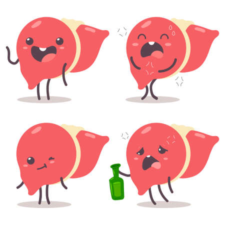 Cute liver vector cartoon characters set isolated on a white background.