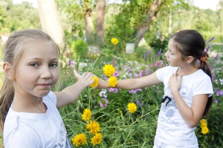 Two girls play with flowers  in park  Stock Photo - 10469025