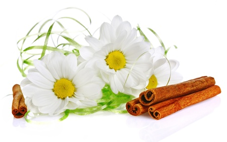 camomile flower and cinnamon photo