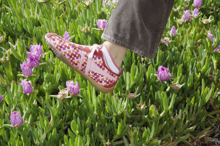 A womans foot in sneakers caught in mid-air above a patch of wild flowers