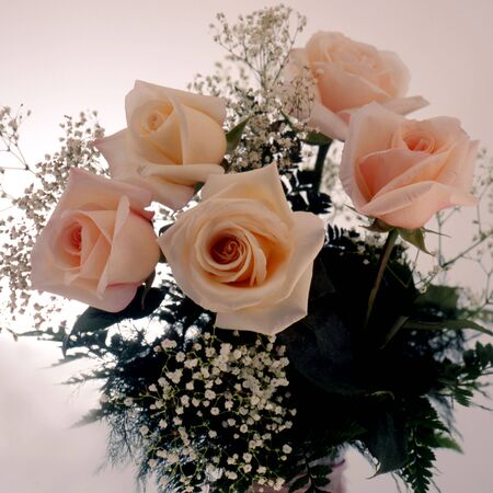 bouquet of salmon colored roses with baby tears