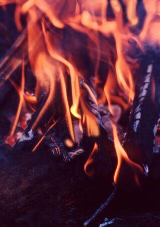 hot flames of a wood camp fire Standard-Bild