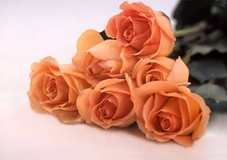 six Roses placed in a pyramid